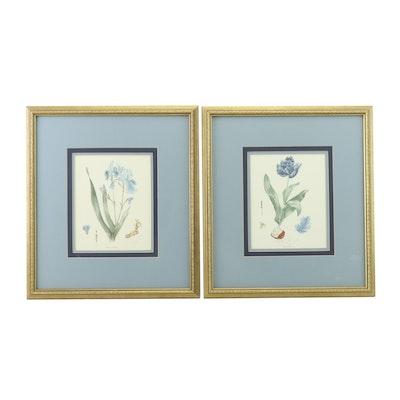 Offset Lithographs after Gethen's Botanical Illustrations