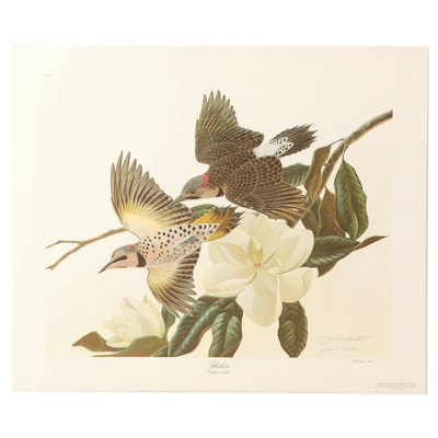 "John Ruthven Offset Lithograph ""Flickers"""