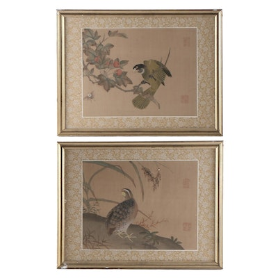 Chinese Ink and Watercolor Paintings of Birds
