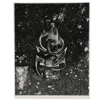 "Don Jim Silver Gelatin Photograph from ""Urban Artifax (Found Objects)"""