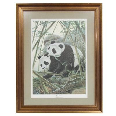 "John A. Ruthven Offset Print ""Giant Pandas"""