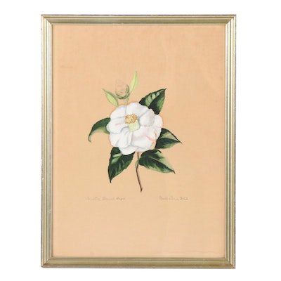 """Mabel Dunn White Gouache Painting """"Camellia Admiral Ralph"""""""
