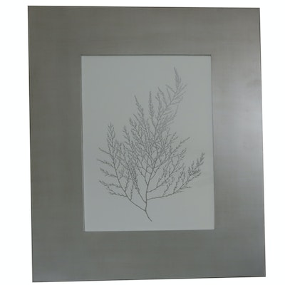 Offset Lithograph Print of Branch with Metallic Silver Frame