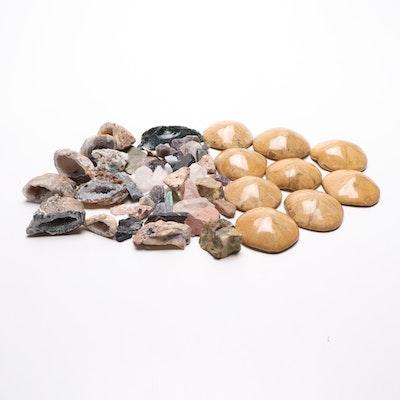 Crystalline Geodes, Sand Dollar Fossils, and Other Minerals