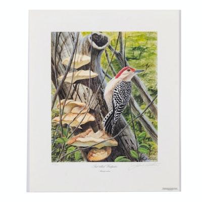"John Ruthven Offset Lithograph ""Red-bellied Woodpecker"""