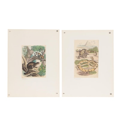 1864 Hand-Colored Lithographs of Animals