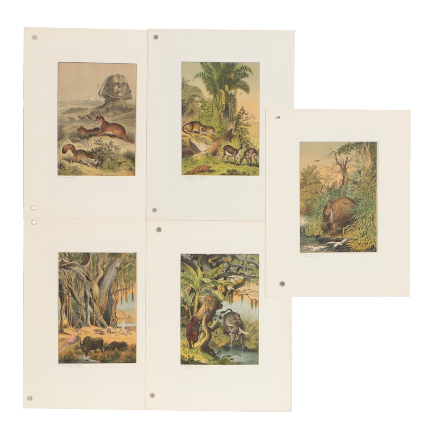 """1872 Hand-Colored Lithographs from """"The Instructive Picture Book"""""""