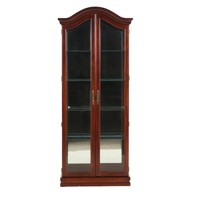 Contemporary Glass and Wood Frame Lighted Display Cabinet