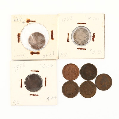 Eight Indian Head Cents, 1863 to 1908