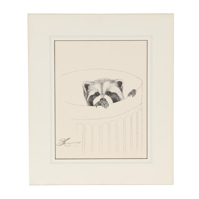 Etching of a Raccoon