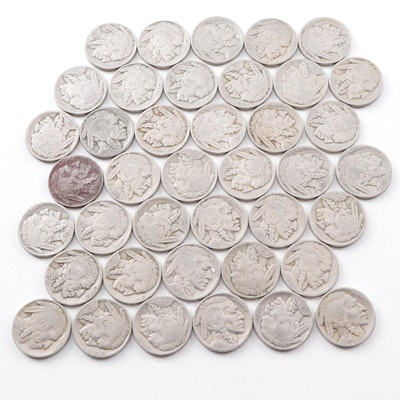 Forty Buffalo Nickels