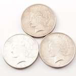 1923-1924 Silver Peace Dollars
