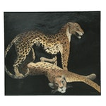 Denis Bruss Leopards Oil Painting