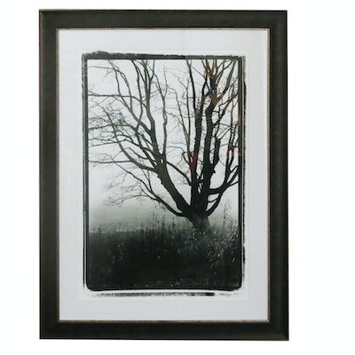 Black and White Offset Lithograph of Tree with Wooden Frame