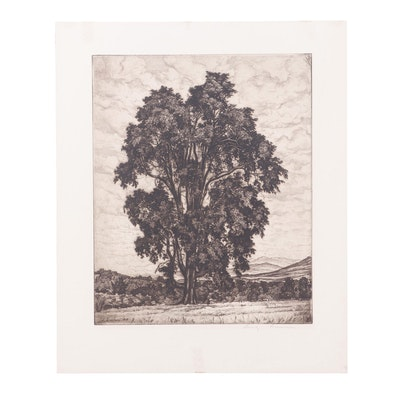 "Luigi Lucioni 1948 Etching ""Elm on the Hill"""
