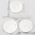 2001, 2002, 2003 Silver Eagle Dollars