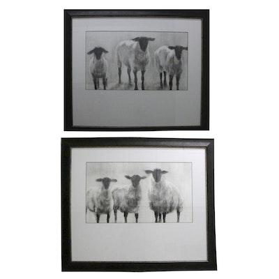 Pair of Framed Black & White Offset Lithographs of Sheep