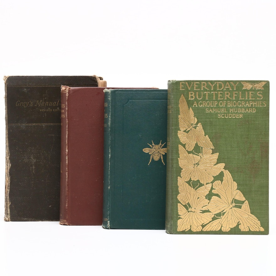 "Antique Nature Books featuing ""The Butterflies of the Eastern United States"""