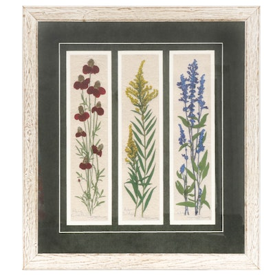 "Triptych Hand-Colored Lithograph ""Prairie Coneflower; Aster Solidago; Salvia"""