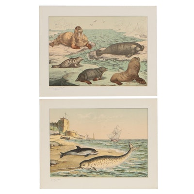 1886 Chromolithographs after Gotthilf Heinrich von Schubert