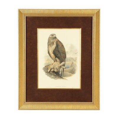 """Late 19th Century Hand-Colored Lithograph after John Gould """"Archibuted Lagopus"""""""