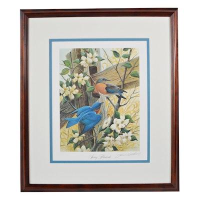 """John Ruthven Offset Lithograph """"Spring Bluebirds"""""""