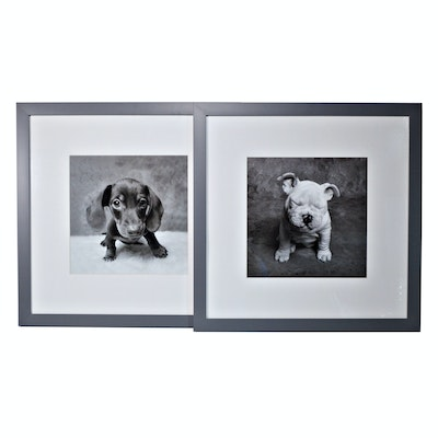 Offset Lithographs of Puppies