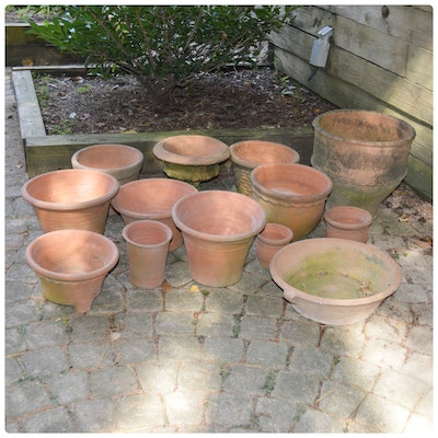 Terracotta Pot Collection