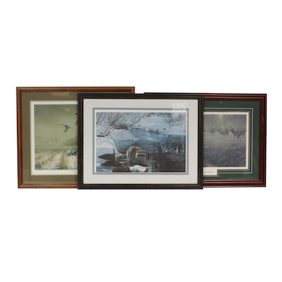Framed Wildlife Prints