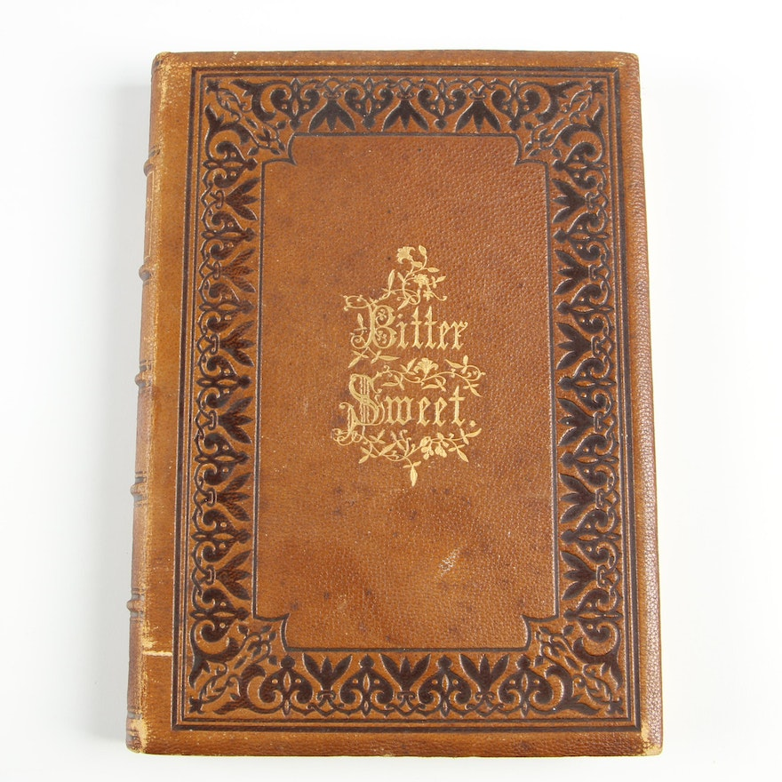 """Illustrated """"Bitter-Sweet: A Poem"""" by Josiah Gilbert Holland, 1869"""