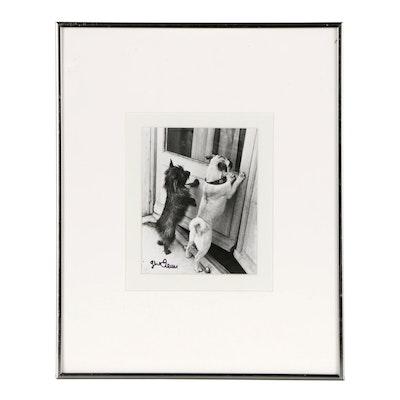 "Gene Fenn Photograph ""Two Dogs (Duke and Duchess)"""