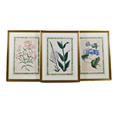 "Hand Colored Lithograph ""Paxton's Magazine of Botany"" and Others"