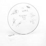 Backstreet Boys Signed Remo Drum Head