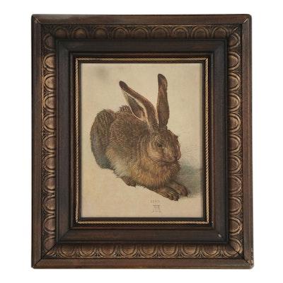 """Offset Lithograph after Albrecht Durer """"Young Hare"""""""