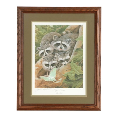 "John Ruthven Offset Lithograph of Raccoons ""Surprise Encounter"""