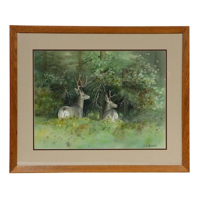 """Susan Bourdet Watercolor and Gouache Painting """"Forest's Edge (Mule Deer)"""""""