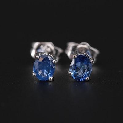 14K White Gold Sapphire Stud Earrings
