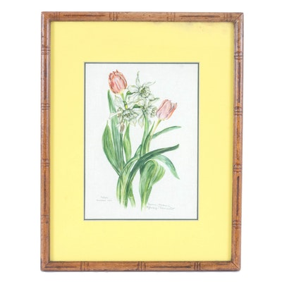 "Watercolor Painting ""Tulipa, Narcissus Hort."""