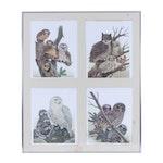 John Ruthven Owl-Themed Offset Lithographs