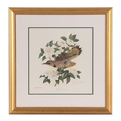 "John A. Ruthven Offset Lithograph ""Flicker and Camellias"""