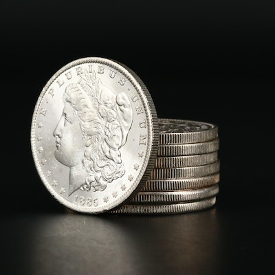 Eight Uncirculated Morgan Silver Dollars