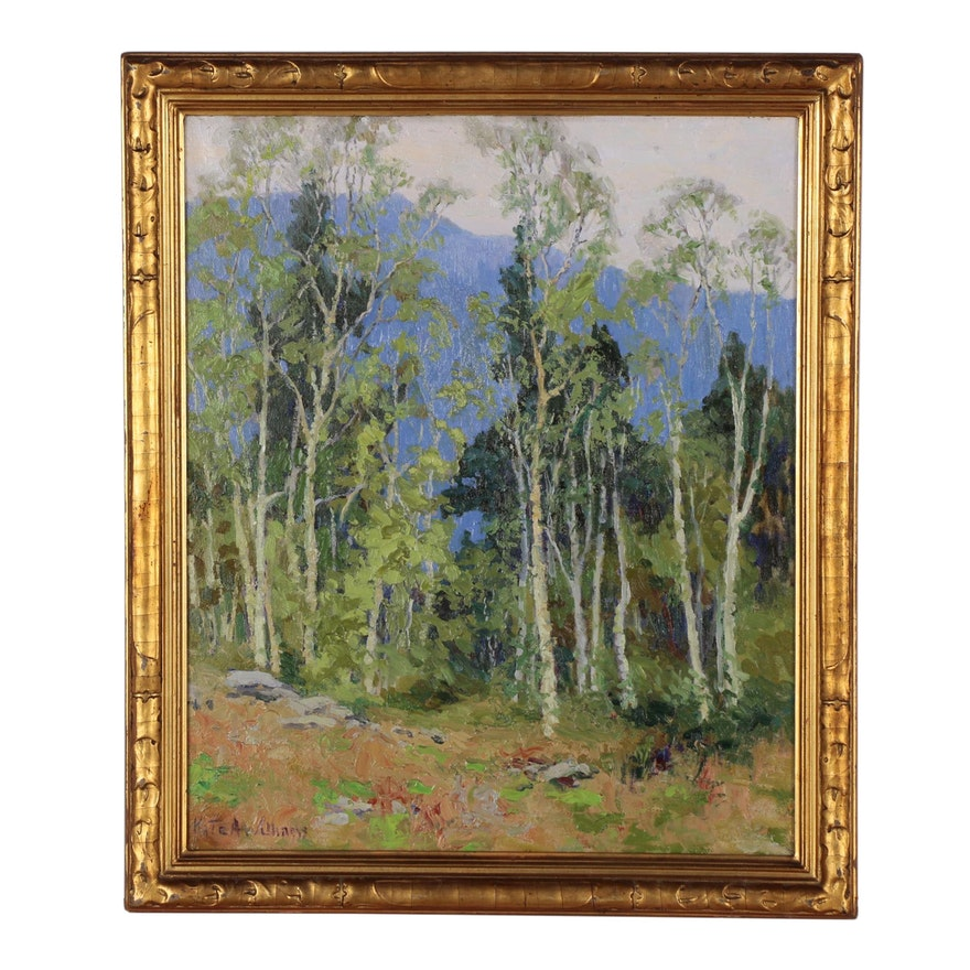 "Kate A. Williams Landscape Oil Painting ""Poplars at Rangely"""