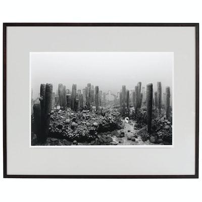 "Hiroshi Sugimoto Silver Gelatin Photograph ""Permian Period"", 1992"