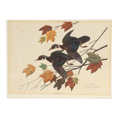 "John A. Ruthven Offset Lithograph ""Wood Ducks,"" 1968"