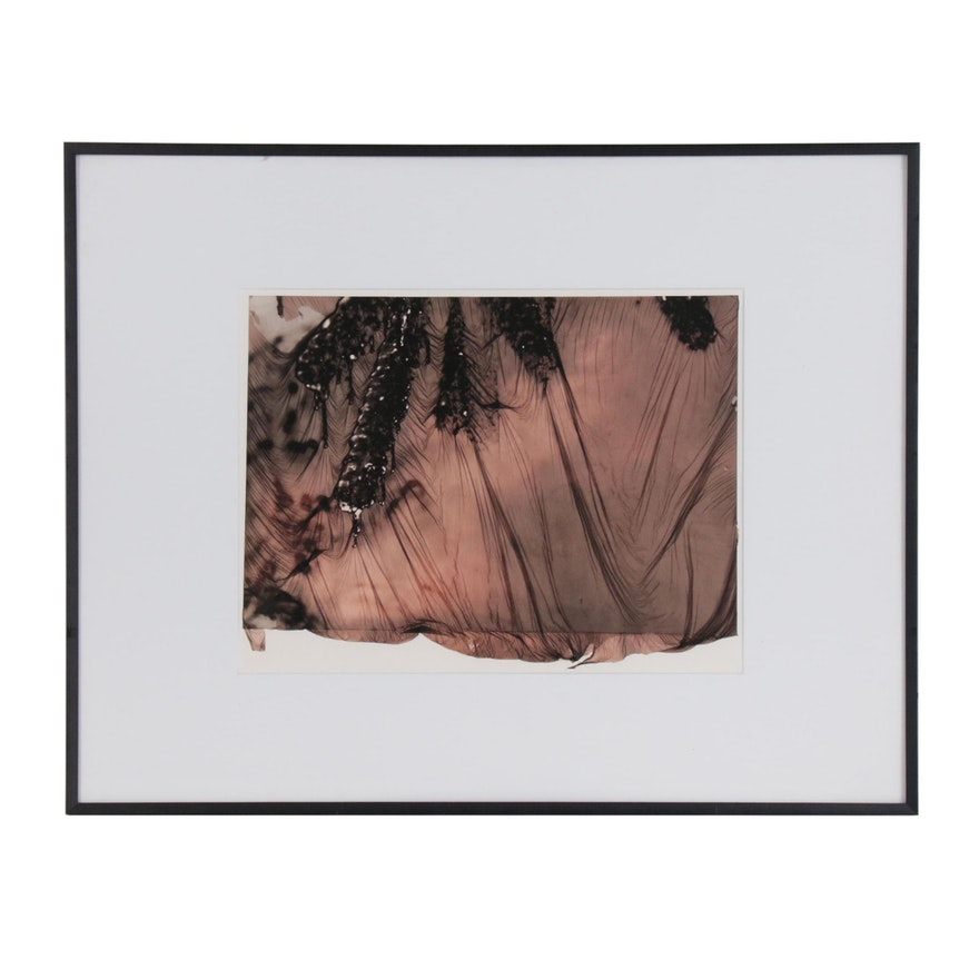 "Alan MacKellar Digital Photograph ""Ice Cones"", 2003"