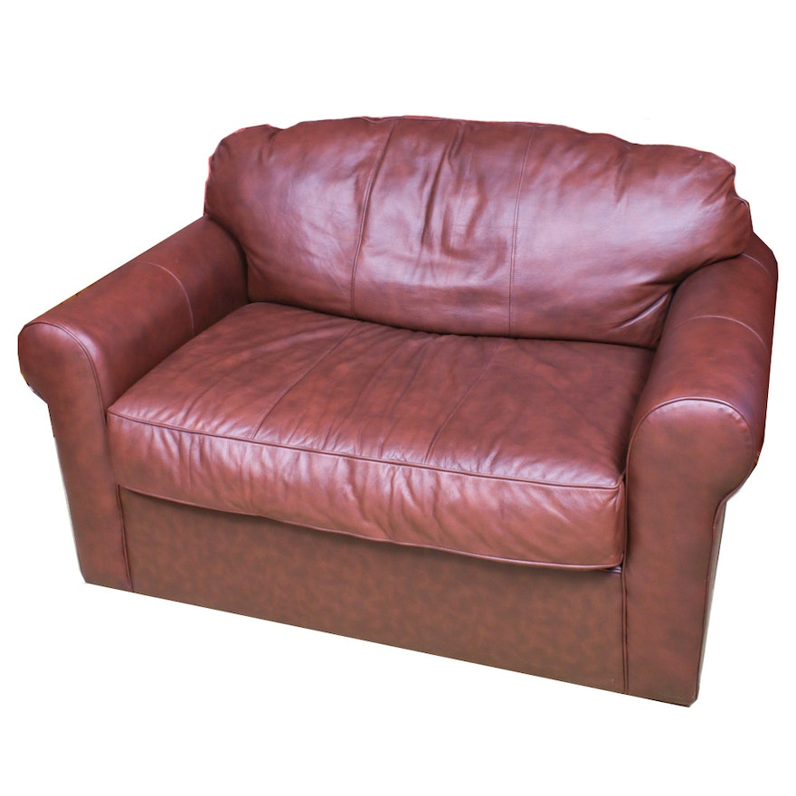 Brown Leather Sleeper Loveseat, Contemporary