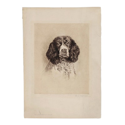Edwin Megargee Etching of a Springer Spaniel