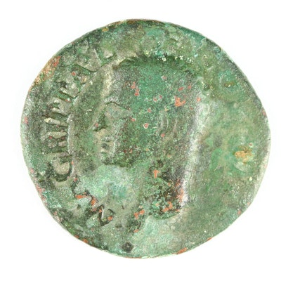 Ancient Roman Imperial AE As of Agrippa, Struck Under Caligula, ca. 37 A.D.