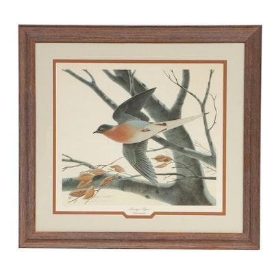 """John A. Ruthven Offset Lithograph """"Passenger Pigeon"""""""