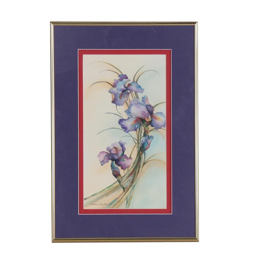 Connie Neylan Watercolor Painting of Iris Flowers
